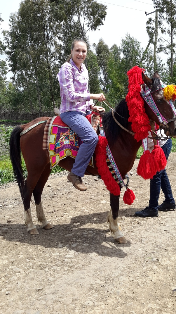 rachel on mule