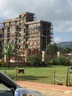 Nov 8 scaffolding